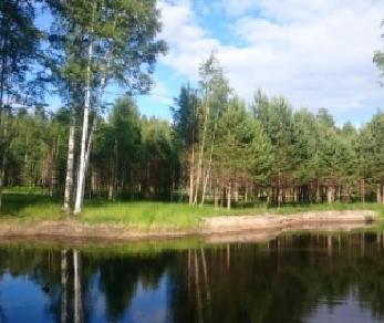 Продажа участка КП Ладожский пляж, уч.16