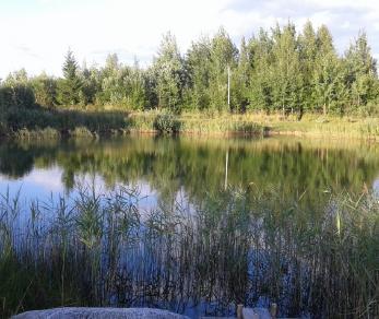 Продажа дома Радофинниково