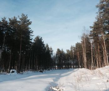 Продажа участка Приморское ш., 65 км