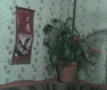 Продажа квартиры Ломоносов, Сафронова ул., д.6