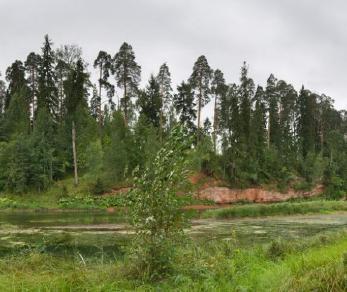 Продажа участка п. Озерки