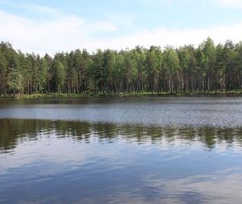 Продажа участка КП Семь ручьев, уч. 493