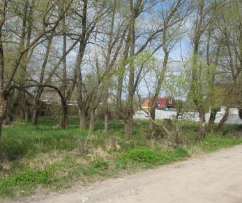 Продажа участка Ульяновка, Мариинская ул.