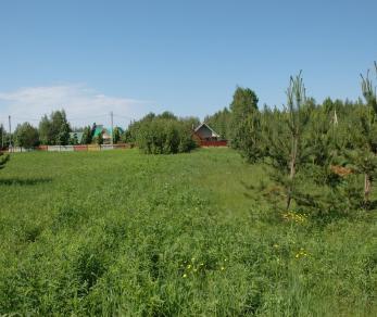 Продажа участка Прибылово