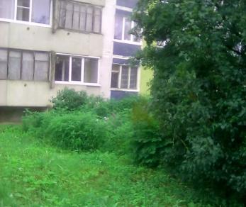 Продажа квартиры Волосово г., Ленинградская ул., д. 7