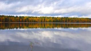 Коттеджный поселок Озеро Пионерское