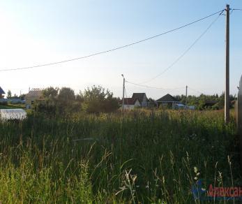 Продажа участка Пушкин, Лесное тер.