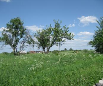 Коттеджный поселок Алакюля