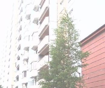 Продажа квартиры Тамбасова ул., д.13