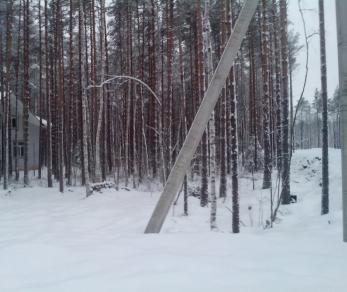 Продажа участка Белоостров массив, Белоостров днп