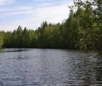 Продажа участка Путилово