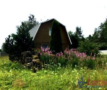 Продажа дома Староселье