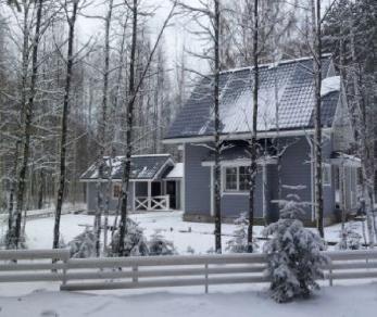 Коттеджный поселок Борисово 2