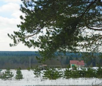 Коттеджный поселок Карельский бриз