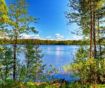 Коттеджный поселок Озеро Отрадное