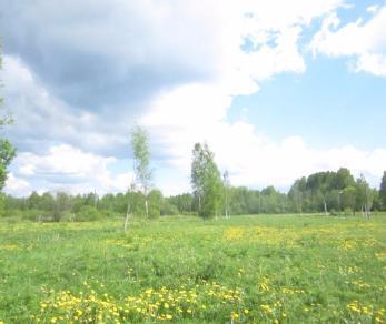 Продажа участка поселок Ульяновка, поселок Ульяновка