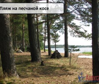 Продажа участка Подборовье
