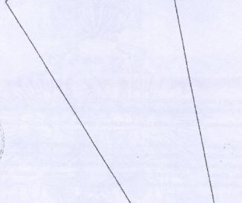 Продажа участка Стрельна, Нижняя Колония ул.