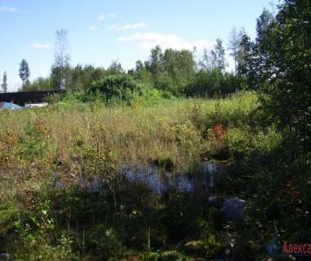Продажа участка Шлиссельбург, Староладожский канал ул.