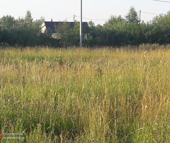 Продажа участка Шаглино дер., Шаглино деревня