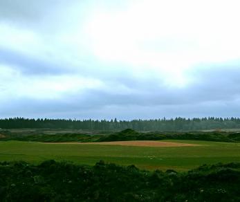 Коттеджный поселок Gorki