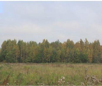 Продажа участка Узигонты, 1-й Спортивный прд.