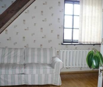 Аренда дома Александровская