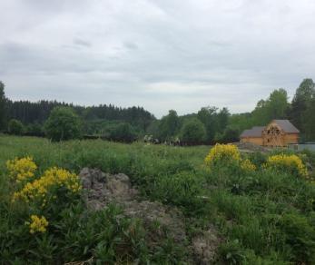Коттеджный поселок Хвойное-Луговое