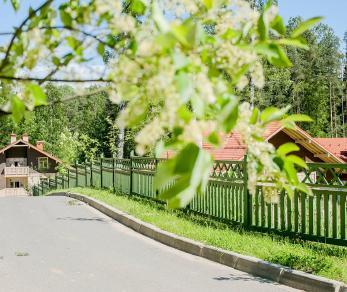 Коттеджный поселок Альпино