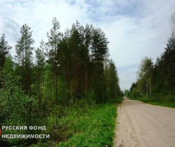 Продажа участка Войтолово, Речная ул.