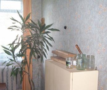 Продажа квартиры Почап, Солнечная ул., д.14