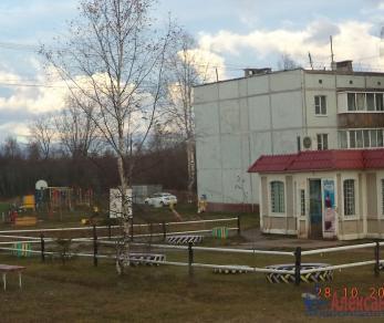 Продажа квартиры Вындин Остров дер., д. 12