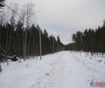 Продажа участка Белоостров, Александровское ш.