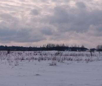 Продажа участка Лопухинка дер., Лопухинка деревня