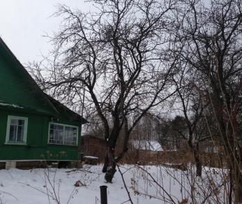 Продажа дома Ситенка, Новая ул.