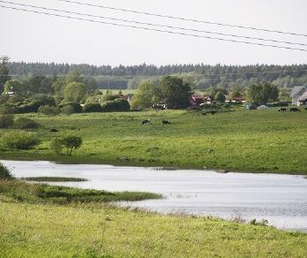 Продажа участка Горки, Лужская ул., д.2