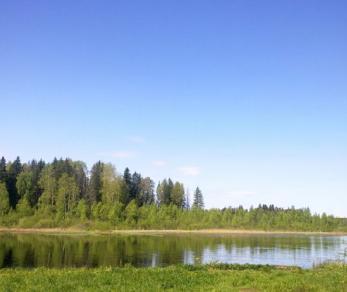 Коттеджный поселок Чикинское Озеро