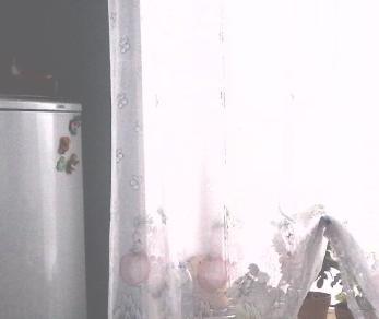 Продажа квартиры Петергоф, Бр. Горкушенко ул., д.9