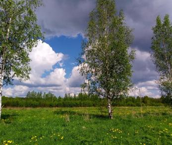 Продажа участка деревня Удальцово, Удальцово