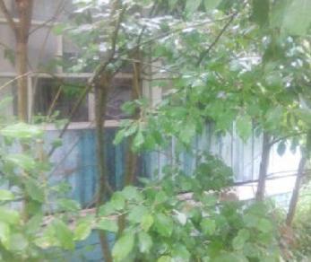 Продажа дома Келколово
