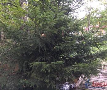 Продажа дома Белоостров