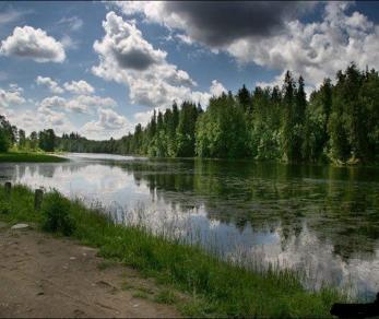 Продажа участка Рождествено