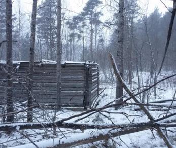 Продажа участка Кузнечное, Б. Боровская ул.