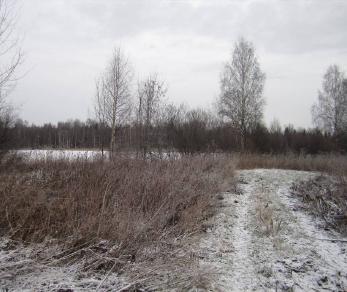 Продажа участка Вещево
