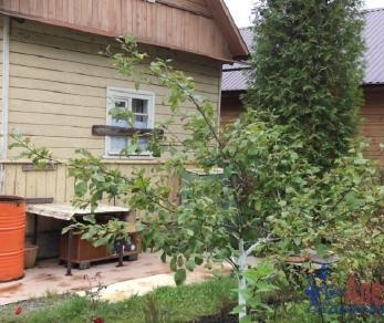 Продажа дома Грибное массив