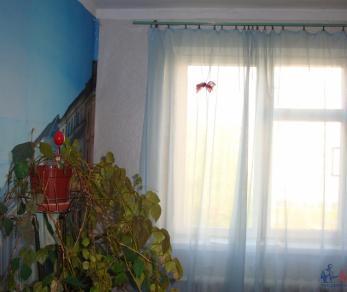 Продажа квартиры Кириши, Молодежный бул., д.16