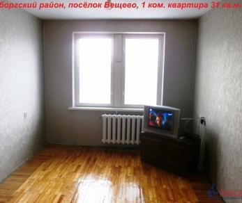 Продажа квартиры Вещево, д.15