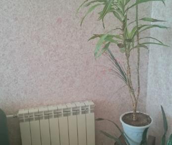 Продажа квартиры Назия, Международная ул., д.2