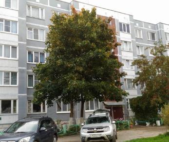 Продажа квартиры Красноозерное, Школьная ул., д.7