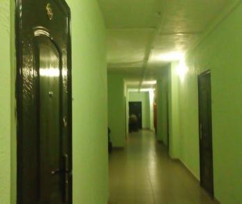 Продажа квартиры Новое Девяткино дер., Арсенальная ул., д. 1